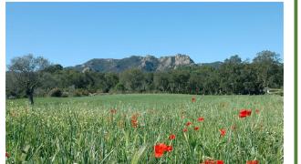 Catàleg d'Elements d'Interès Natural (CEIN) Santa Cristina d'Aro