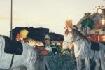 1996-Merlots_Somni_duna_nit_destiu_2
