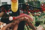 2003-Merlots_Tucan_els_Colors_de_la_Natura