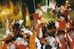 2005-MerlotsUn_Tomb_Pels_Origens_2